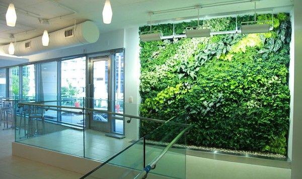 Hydroponic Garden Decor ideas