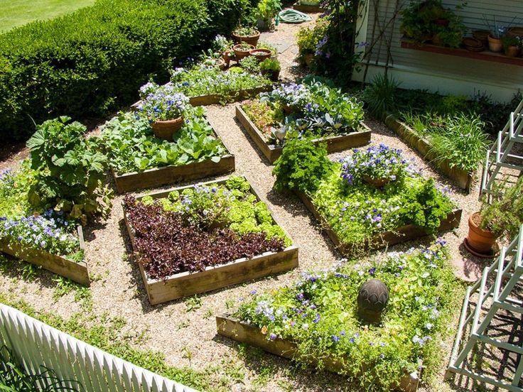 Small veggie garden ideas garden didn t like gardening for Small veggie garden ideas