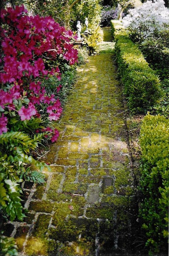 25 Best Charleston Gardens Ideas On Pinterest