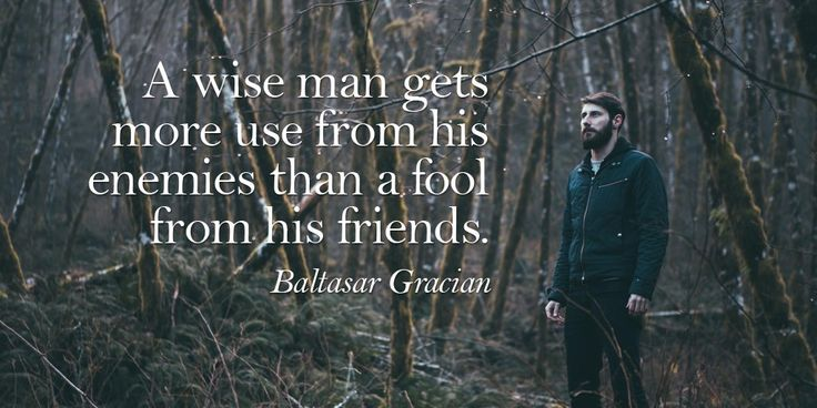 25+ Best Fool Quotes On Pinterest