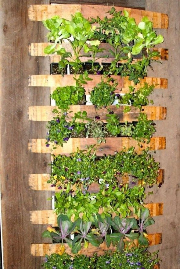 Stunning Diy Vertical Garden Design Ideas 25 Vertical Garden Design Vertical Herb Garden Vertical Vegetable Garden