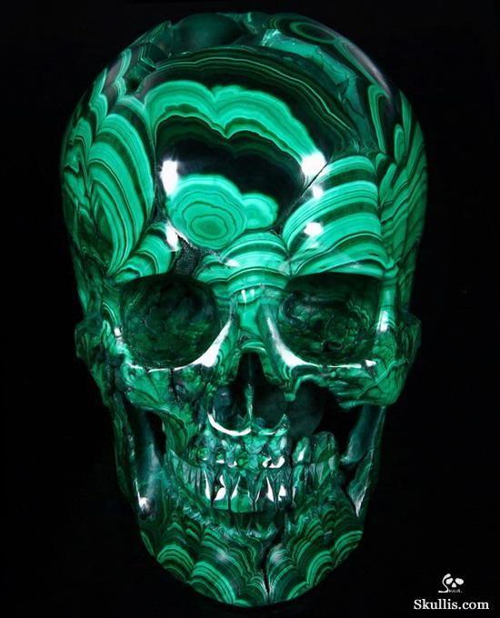 804 best skulls images on pinterest | skull art, skeletons and, Human Body