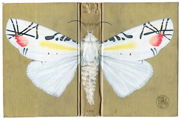 Rose Sanderson - Portfolio - Bugs on Book Covers