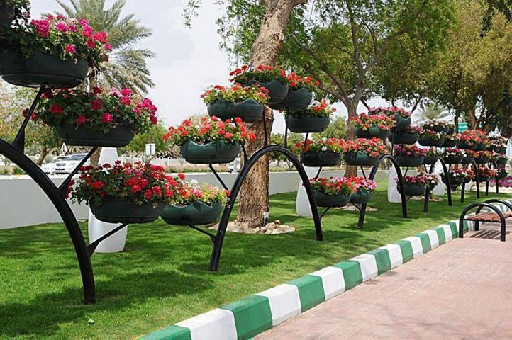Tire planters along walkway
