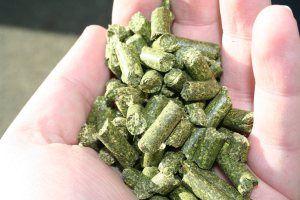 Using alfalfa pellets as cheap organic fertilizer for your lawn and garden