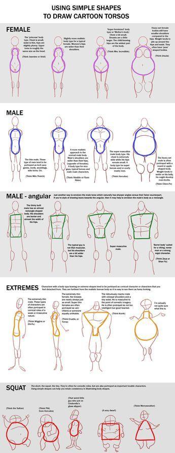 Using simple shapes to draw cartoon torsos http://macawnivore.deviantart.com/art/Chart-Cartoon-Torso-257832903