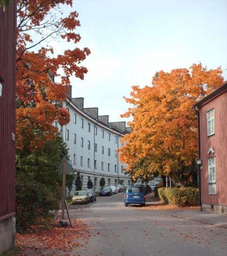 Käpylä, Sampsa Street, Helsinki. My son was born here,