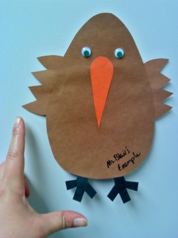 Kiwi Magnets And Birds On Pinterest