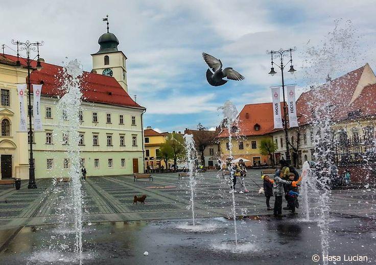 https://flic.kr/p/nYVmV1 | Sibiu