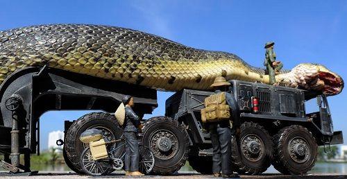 Inocente´s: Cobra gigante que mata turistas em mar vermelho é ...