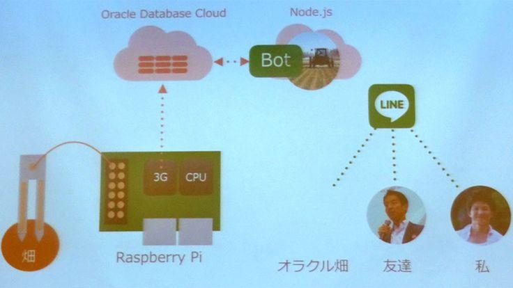 日本オラクルは2016年8月10日、東京・青山の同社オフィスで、IoTアプリケーションをテーマとした「Oracle Cloud Developers…