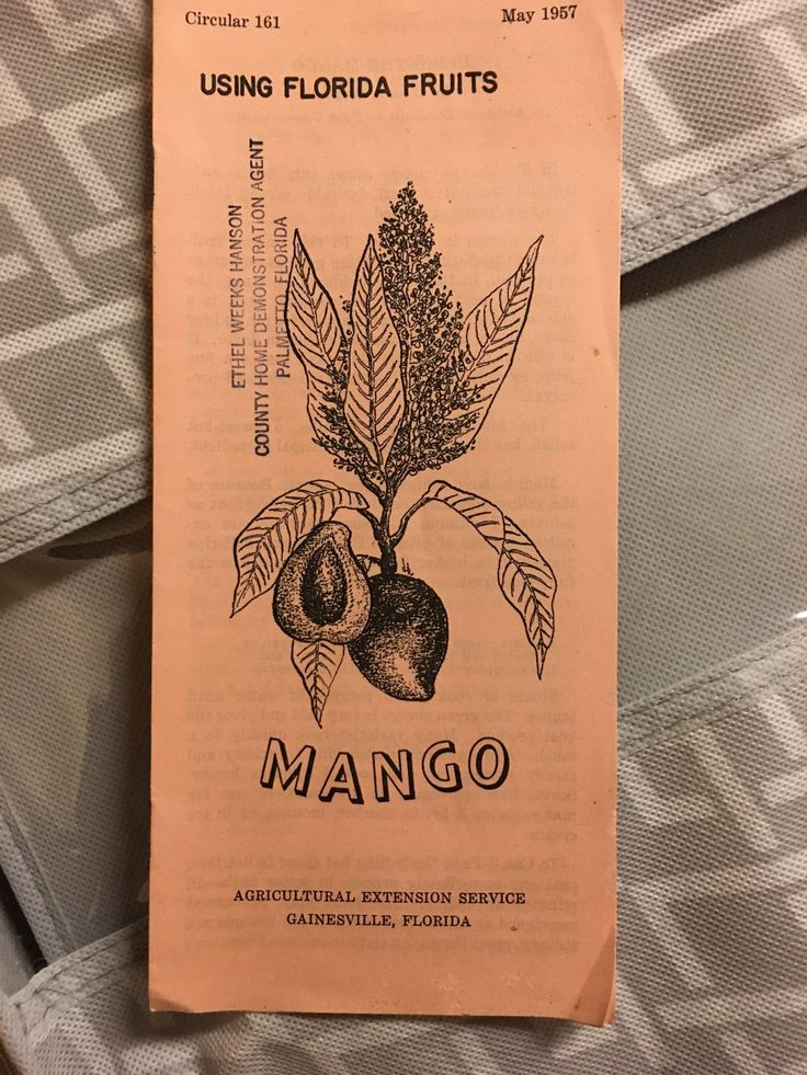 MANGOS May 1957 Circular 161 USING FLORIDA FRUITS MANGO AGRICULTURAL EXTENSION SERVICE GAINESVILLE, FLORIDA   https://nemb.ly/p/rJ8Cq=7ql Happily published via Nembol