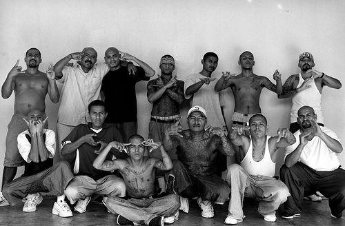 Gang members, gente tranquilla