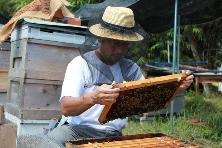 システム屋から養蜂家へ 一歩踏み出した先で天職と出会う / 桑原周之さん   ローカルニッポン   無印良品