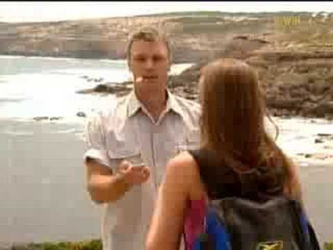 Australian Survivor - Episode 1  Australian Survivor was a television series based on the popular reality show Survivor. The series was filmed in November and December 2001 and aired weekly from 13 February – 15 May 2002 on Australia's Nine Network. It was set at Whaler's Way, an Eyre Peninsula coastal nature reserve in Port Lincoln, South Australia in the Great Australian Bight, where numerous ships had sunk off the coast in the past. This set up the nautical theme of the series.