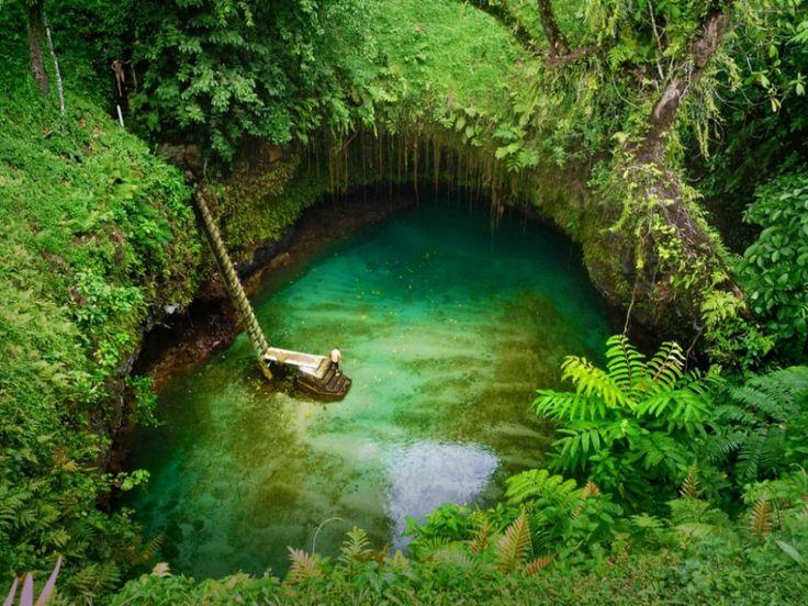 Tosua Pool -  isole Samoa Bisogna scendere per più di 30 metri per potercisi fare il bagno, ma questa piscina naturale ricavata in mezzo a rocce vulcaniche e a una fitta giungla vale il rischio