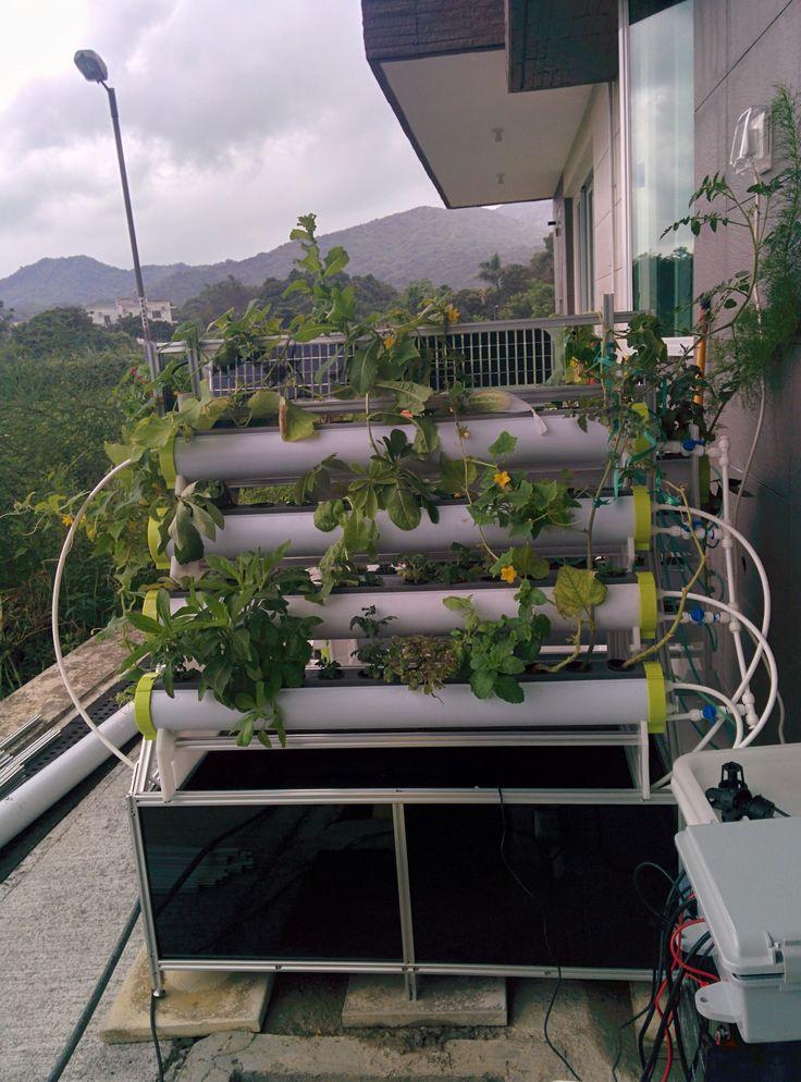 70 best hydroponics aquaponics images on pinterest for Hydroponic grow bed