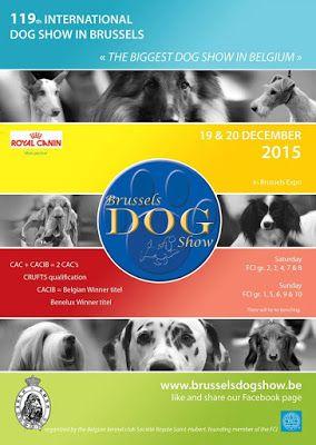 Hondenshow Brussel 2015