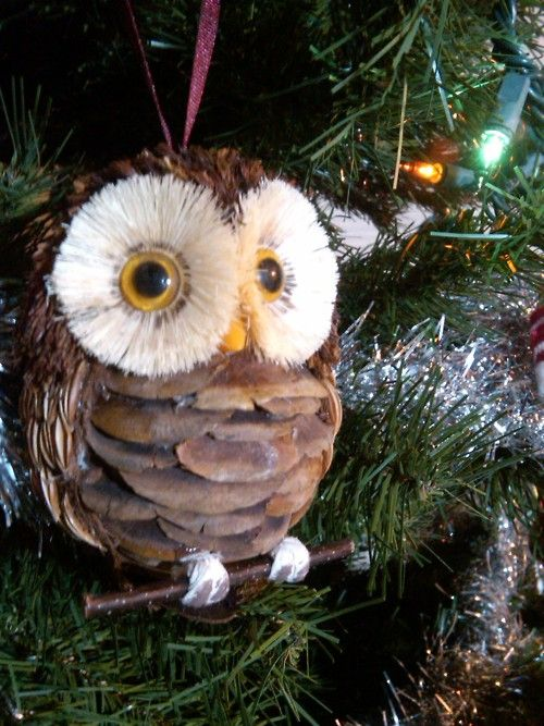 another cute owl made of pinecone