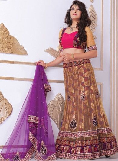 Beige Net and Jacquard Lehenga Choli