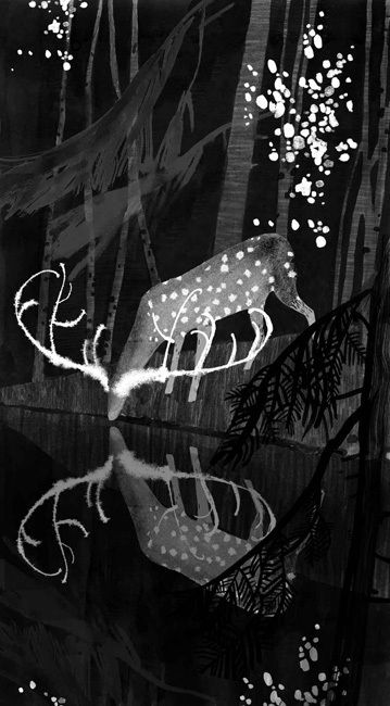 illustration, animal, deer, ghost, woodland, black and white, water. Illustrations by Victoria