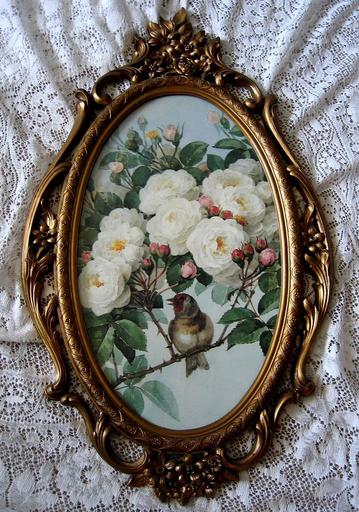 Paul de Longpre White Bride Roses Bird Print Fancy Homco Syroco Frame Yard Long Buy now at Victorian Rose Prints on rubylane.com