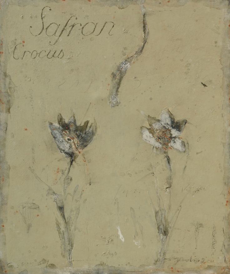 """Safran Crocus"", 2011 150 x 127 cm"