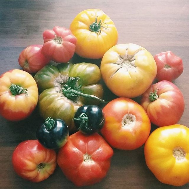 Tyle wygrać  #beautiful #tomatoes #happy #vegan #fullyraw #vegansofig #veganfoodshare #vscocam #vsco #summer #weganizm #lato #jedzenie #pomidor #foodpics