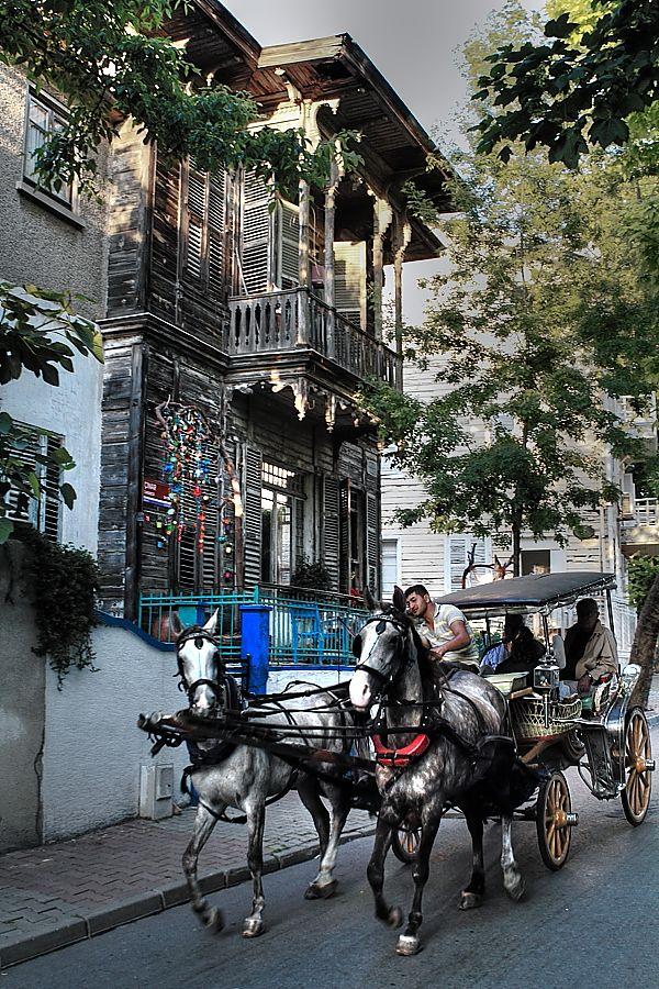Horse cart rides in Büyükada ... Photo by Engin Erol