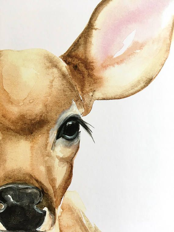 Fawn 4 Original Watercolor Print Fawn Illustration Original