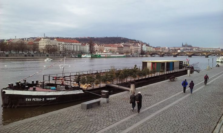 A second home for Christmas trees and architecturally designed wooden sauna, housed together on an old barge on the River Vltava.