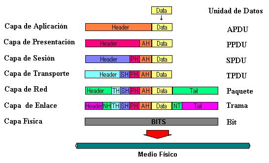 Resultado de imágenes de Google para http://upload.wikimedia.org/wikipedia/commons/f/fc/PDUs.PNG