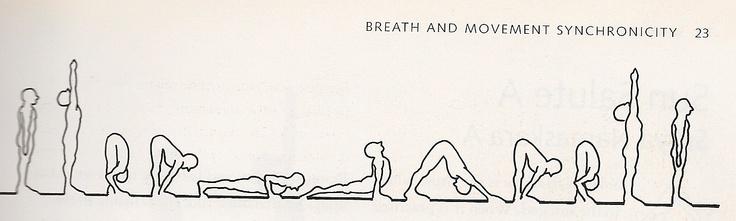 The Sun Salutation is the heartbeat of yoga. - Namaste.