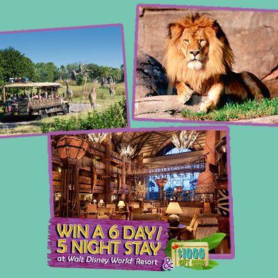 Win A Trip To the Walt Disney World Resort Near Orlando