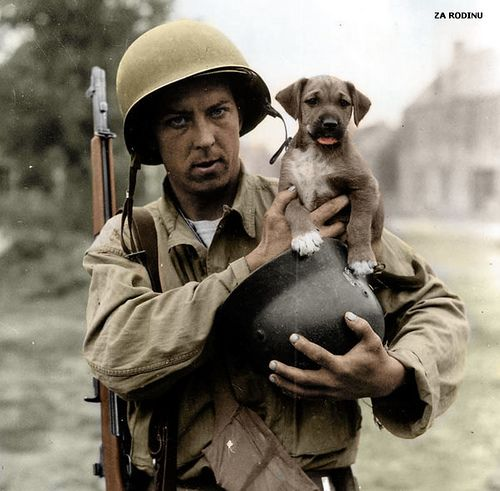 A GI with puppy and German helmet - D day plus 5; by Za Rodinu, via Flickr.