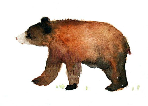 bear on Behance