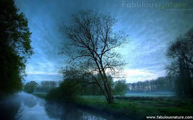 Beautiful Nature Pictures 20