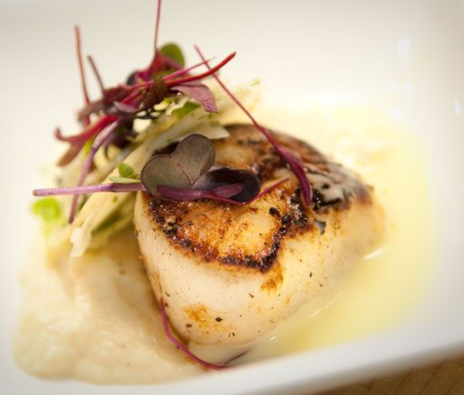 Scallops with Parsnip Purée and Lemon Beurre Monté | Beurre monté is an emulsification of butter fat, milk solids, and water. Here, a bit of lemon and truffle oil make it the perfect match for scallops.