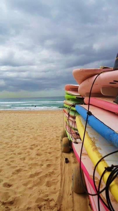 Surfing at Manly Beach, Sydney , Australia