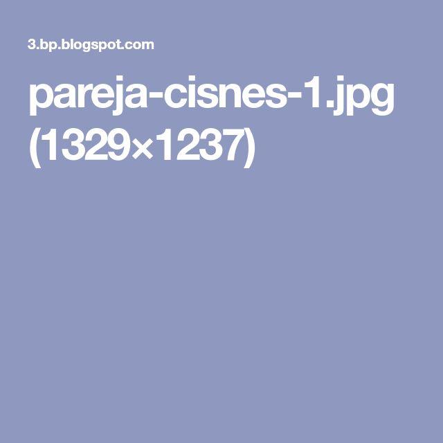 pareja-cisnes-1.jpg (1329×1237)