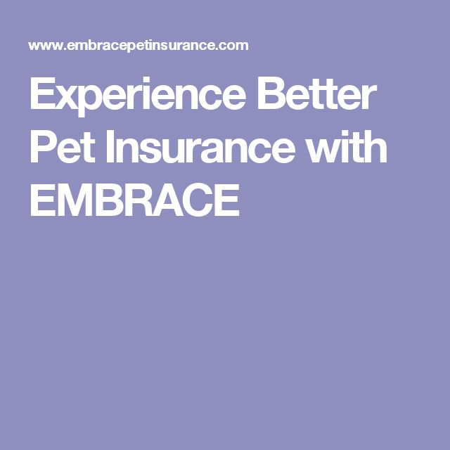 Experience Better Pet Insurance with EMBRACE