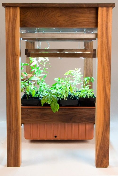 Hydroponic grow system built in to kitchen table. Handy.