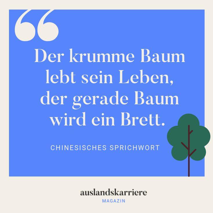 Der krumme Baum lebt sein Leben, der gerade Baum w…