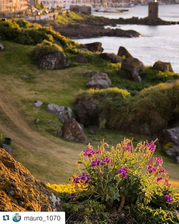 by http://ift.tt/1OJSkeg - Sardegna turismo by italylandscape.com #traveloffers #holiday | Spettacolo! #Repost @mauro_1070 with @repostapp  Una finestra sul porto con fiori sul davanzale #loves_united_nature #igersardegna #lanuovasardegna #sardegnaofficial #sardiniamylove #focusardegna #sardegna_super_pics #bestsardegnapics #loves_sardegna #loves_united_sardegna #vivosardegna #sardegnamare #verso_sud_natura #ig_sardinia #ig_perlas #instasassarigram #igersitalia #ig_worldclub…
