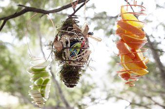 DIY- Bird Feeder: Gardens Ideas, Birds Nests Feeders, Birds Food, Diy Birds, Homemade Birds Feeders, Birds Attraction, Attraction Birds, Spirals Birds, Birds Apples Feeders