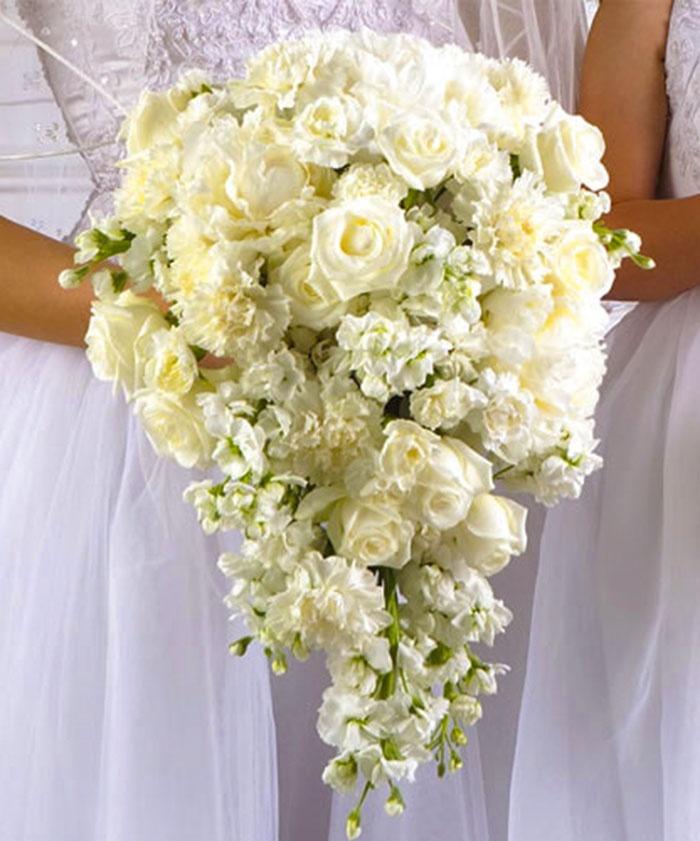 Tulip and amaryllis bouquet weddings pinterest for Bouquet amaryllis