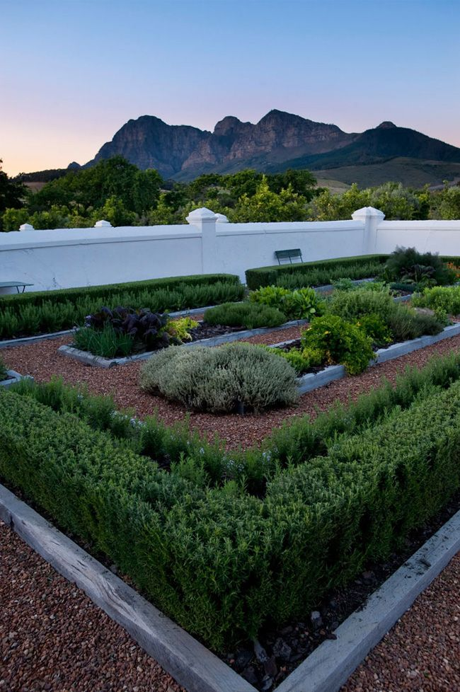 Garden Ideas Cape Town 8 best wine - cape town wine farms images on pinterest