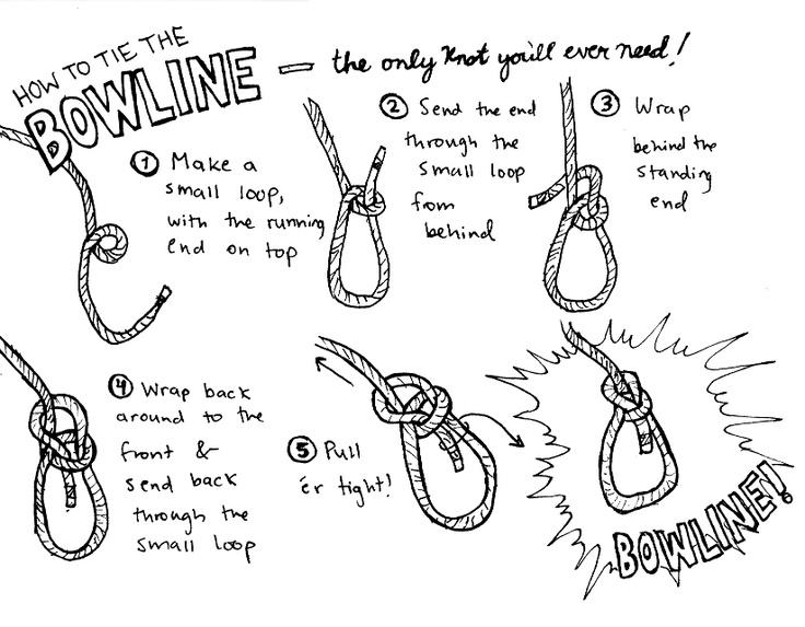 Knoten Bowline