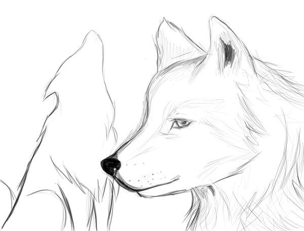 Simple Drawings Of Wolves Clip Art Library