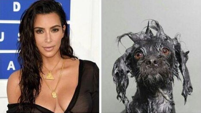 How I think I look with wet hair Vs. how I actually look
